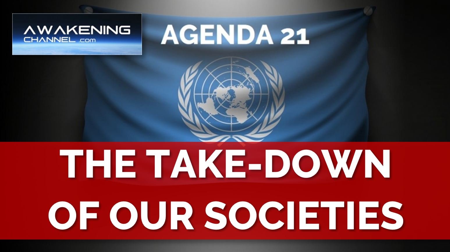 World Freedom & Doctors Alliances: The UN & The Take-Down of Our Societies