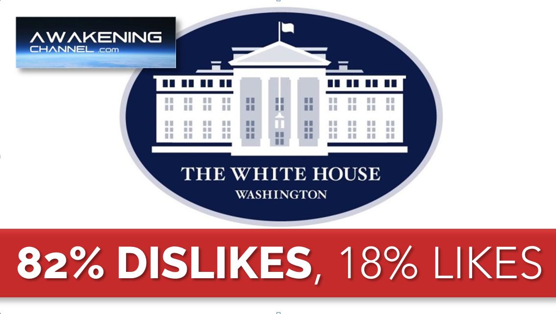 82% Dislikes, 18% Likes.  The White House first quarter