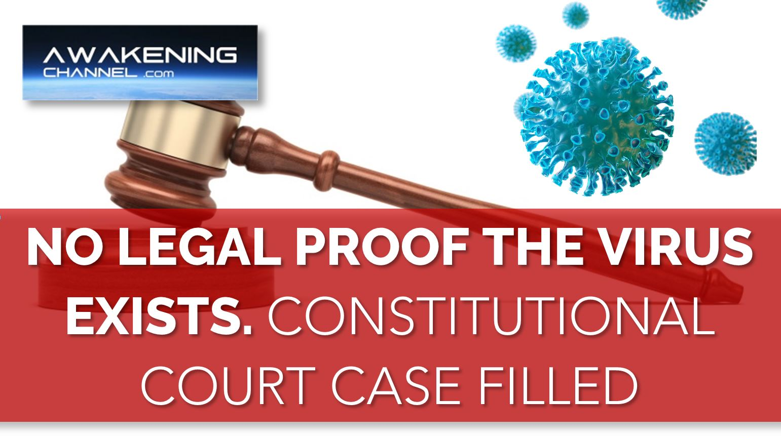 """Constitutional Court Case Against The President, The Parliament and The Reserve Bank of South Africa Regarding the """"Virus"""""""